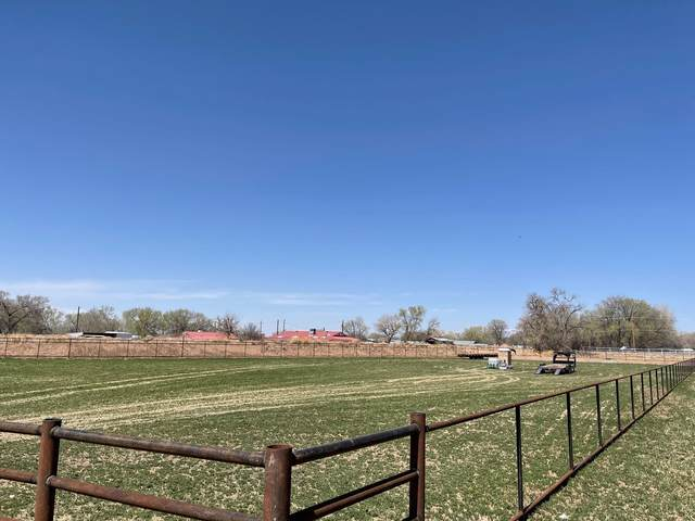 4 Wishbone Court, Los Lunas, NM 87031 (MLS #990211) :: The Buchman Group