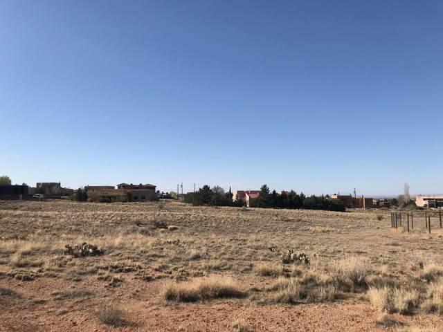 Elena Avenue NE, Albuquerque, NM 87122 (MLS #990256) :: The Buchman Group