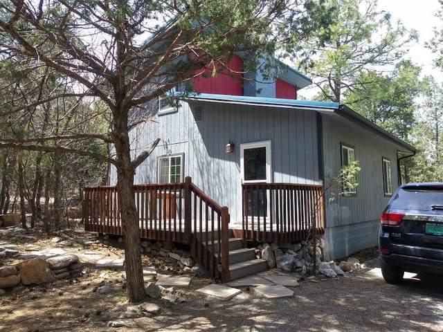 23 Camino Del Sur, Tijeras, NM 87059 (MLS #990291) :: The Buchman Group