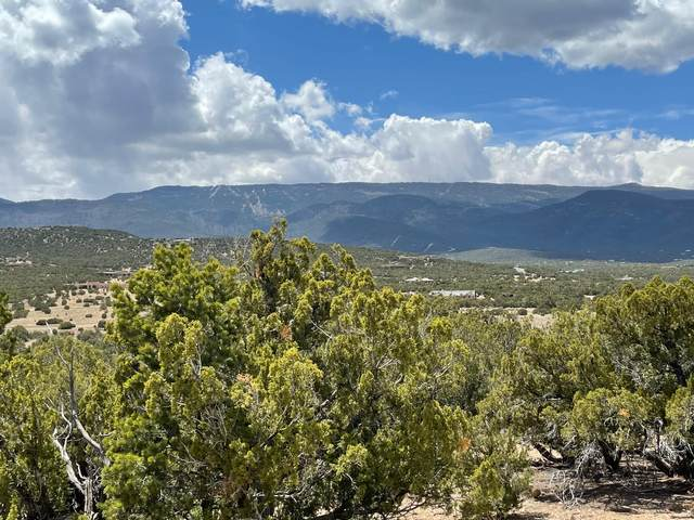 7 Vista De Sandia, Sandia Park, NM 87047 (MLS #990471) :: The Buchman Group