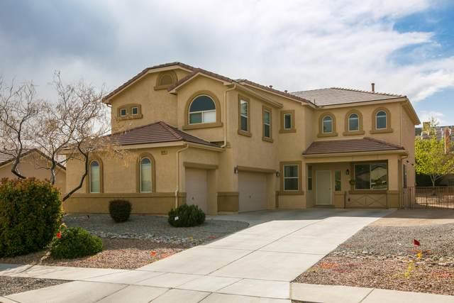 3920 Cholla Drive NE, Rio Rancho, NM 87144 (MLS #990481) :: Berkshire Hathaway HomeServices Santa Fe Real Estate