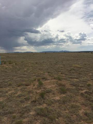 0 Chula Vista, McIntosh, NM 87032 (MLS #990540) :: Keller Williams Realty