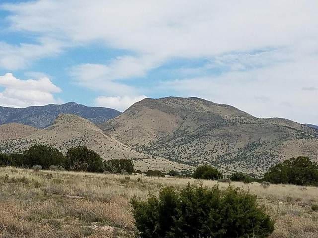Lots 38 39 Magdalena Ranch Estates, Magdalena, NM 87825 (MLS #990682) :: Campbell & Campbell Real Estate Services