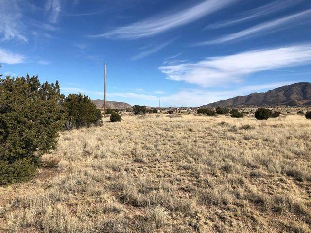 Lot 13 Golden West Subdivision, Magdalena, NM 87825 (MLS #990759) :: Campbell & Campbell Real Estate Services