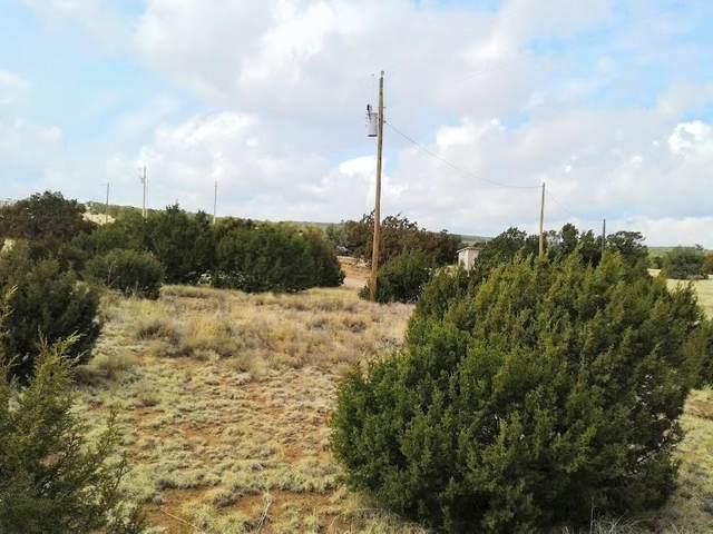 Dixon, Edgewood, NM 87015 (MLS #990855) :: Sandi Pressley Team