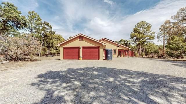 41 Carlisle Road, Tijeras, NM 87059 (MLS #990967) :: Keller Williams Realty