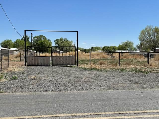 108 Peralta Boulevard, Peralta, NM 87042 (MLS #990991) :: Sandi Pressley Team