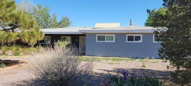 1003 Bullock Avenue, Socorro, NM 87801 (MLS #991020) :: Campbell & Campbell Real Estate Services