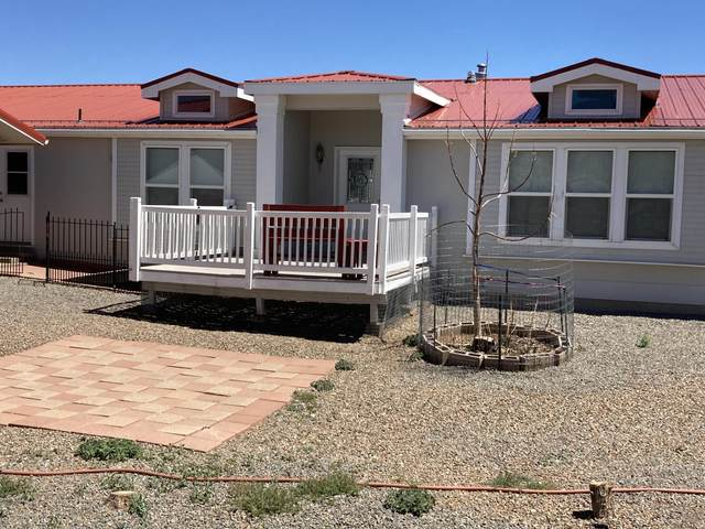 41 Apple Mountain Road, Estancia, NM 87016 (MLS #991035) :: Sandi Pressley Team