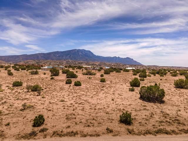 Llano El Norte, Placitas, NM 87043 (MLS #991044) :: Sandi Pressley Team