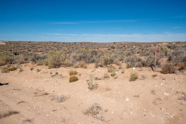 Palm Road NE, Rio Rancho, NM 87144 (MLS #991089) :: Sandi Pressley Team