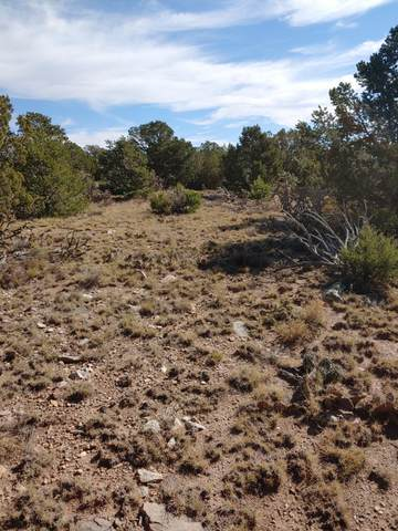 0 Hamate Way, Stanley, NM 87056 (MLS #991148) :: Campbell & Campbell Real Estate Services