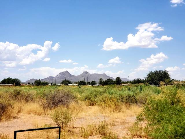 5190 Ortega Road, Las Cruces, NM 88012 (MLS #991158) :: Campbell & Campbell Real Estate Services