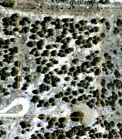 24 Barbara Lane, Edgewood, NM 87015 (MLS #991187) :: Campbell & Campbell Real Estate Services