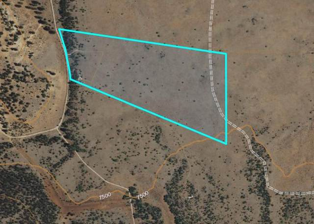 Tract 17 James Valley Ranch, Ramah, NM 87321 (MLS #991199) :: The Buchman Group