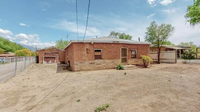 2 Sanchez Road, Corrales, NM 87048 (MLS #991227) :: Keller Williams Realty