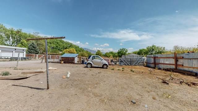 2 Sanchez Road, Corrales, NM 87048 (MLS #991239) :: Keller Williams Realty