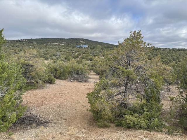 35 Tecolote Court, Sandia Park, NM 87047 (MLS #991248) :: Keller Williams Realty