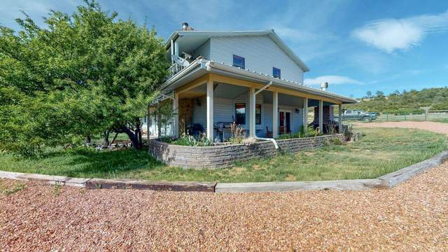 29 Mclaughlin Lane, Sandia Park, NM 87047 (MLS #991272) :: Keller Williams Realty