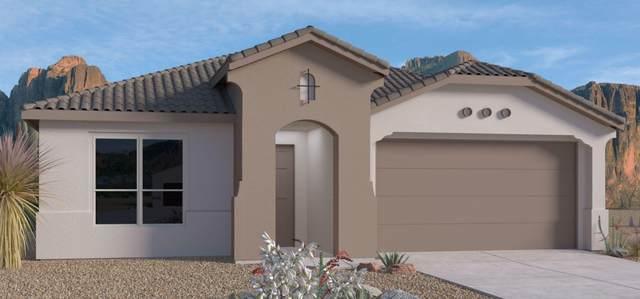 3203 Ilford Road NE, Rio Rancho, NM 87144 (MLS #991293) :: The Buchman Group