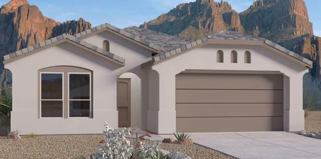6605 Nacelle Road NE, Rio Rancho, NM 87144 (MLS #991295) :: The Buchman Group