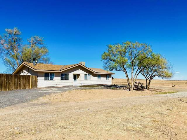 10 Sage Hen Court, Moriarty, NM 87035 (MLS #991307) :: Keller Williams Realty