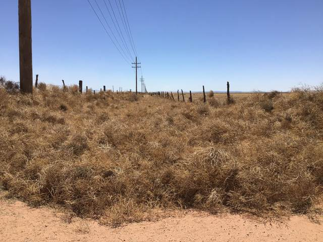 Vacant Land, McIntosh, NM 87032 (MLS #991314) :: Campbell & Campbell Real Estate Services