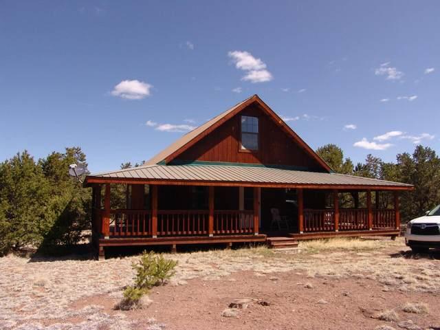 47 Horse Peak Trail Iv, Datil, NM 87821 (MLS #991355) :: Sandi Pressley Team