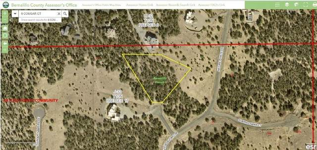 6 Cougar Court, Tijeras, NM 87059 (MLS #991385) :: Sandi Pressley Team
