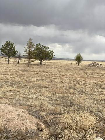 33 Paso Ranch Road, Estancia, NM 87016 (MLS #991459) :: Campbell & Campbell Real Estate Services