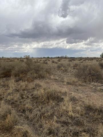 Valle Verde Avenue, McIntosh, NM 87032 (MLS #991463) :: Campbell & Campbell Real Estate Services