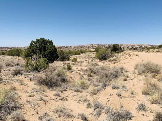 3500 Mineola Road NE, Rio Rancho, NM 87144 (MLS #991468) :: Berkshire Hathaway HomeServices Santa Fe Real Estate