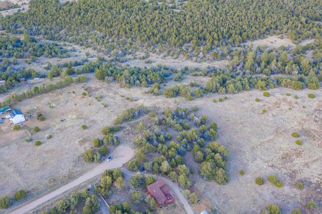 25 Cedar Ridge Road, Edgewood, NM 87015 (MLS #991480) :: The Buchman Group