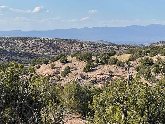 Lot 77 Creekside Trail Trail, Sandia Park, NM 87047 (MLS #991543) :: Campbell & Campbell Real Estate Services