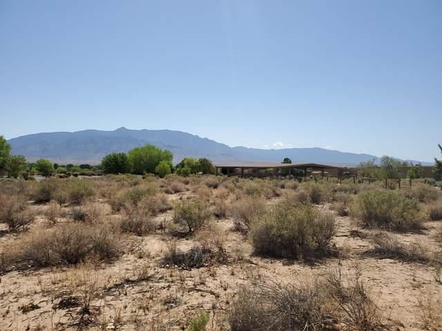 Paseo Tomas Montoya, Corrales, NM 87048 (MLS #991561) :: The Buchman Group