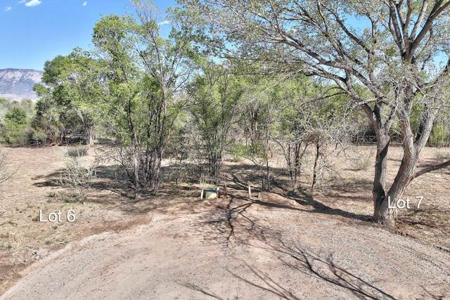 Lot 6 Coroval Court, Corrales, NM 87048 (MLS #991581) :: The Buchman Group