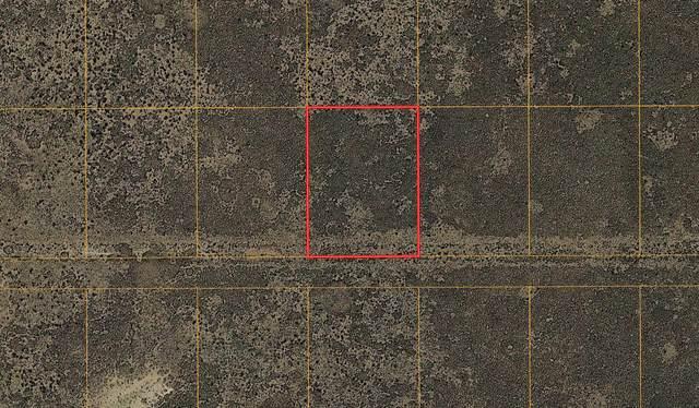 Lot 23 Rio Grande Estates #16, Rio Communities, NM 87002 (MLS #991592) :: Sandi Pressley Team