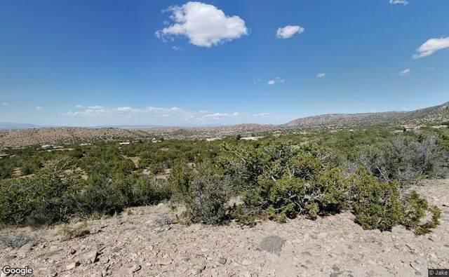 41 Camino De Los Pueblitos, Placitas, NM 87043 (MLS #991603) :: The Buchman Group