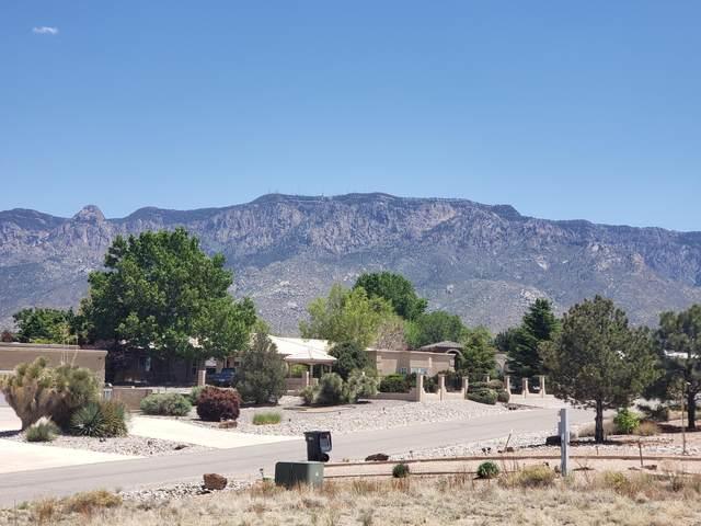 10010 Anaheim Avenue NE, Albuquerque, NM 87122 (MLS #991614) :: The Buchman Group