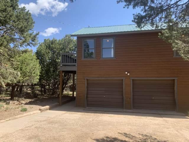10502 New Mexico 337, Tijeras, NM 87059 (MLS #991682) :: The Buchman Group