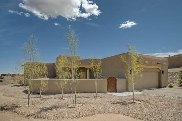 14 Pueblo Bonito Road, Placitas, NM 87043 (MLS #991721) :: The Buchman Group