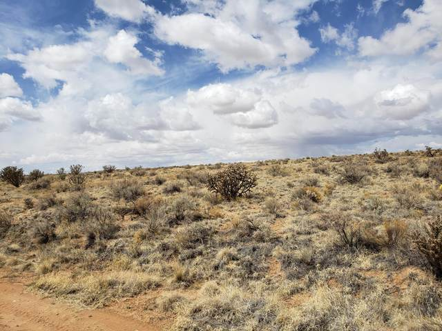 Lot 40 Sprite Court NW, Rio Rancho, NM 87144 (MLS #991755) :: The Buchman Group