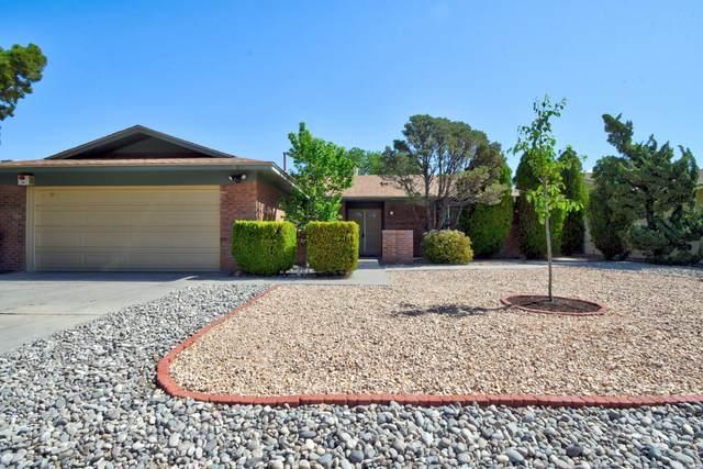 9809 Camino Del Sol NE, Albuquerque, NM 87111 (MLS #991774) :: The Buchman Group