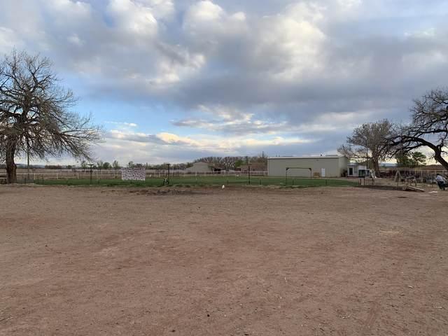 223 Jaramillo Loop, Veguita, NM 87062 (MLS #991801) :: Campbell & Campbell Real Estate Services