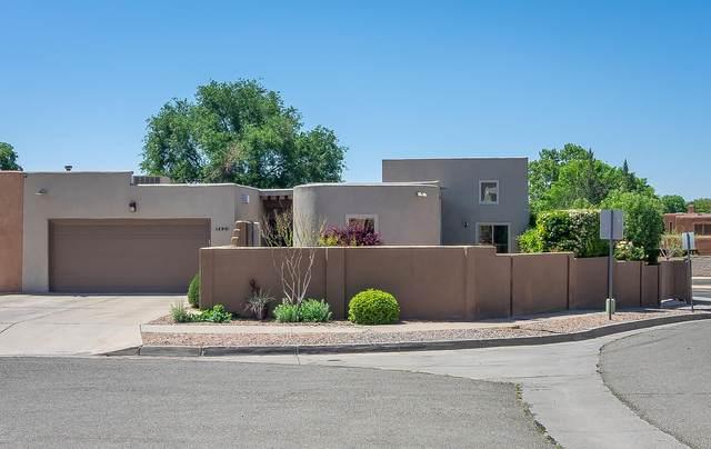 9800 Denali Road NE, Albuquerque, NM 87111 (MLS #991895) :: Sandi Pressley Team