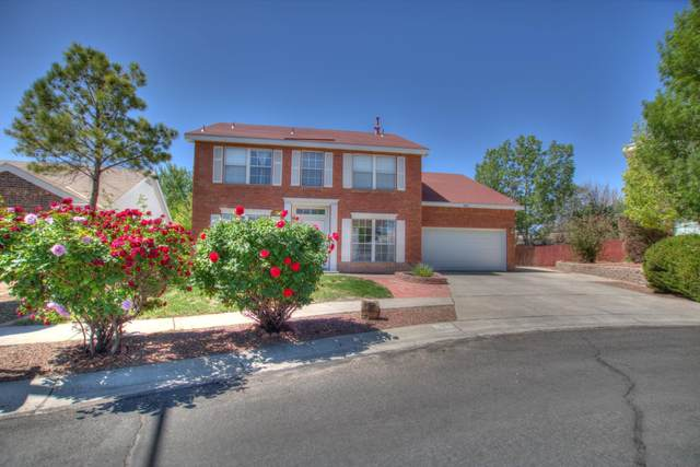 8036 Stoneybrook Place NW, Albuquerque, NM 87120 (MLS #991918) :: The Buchman Group