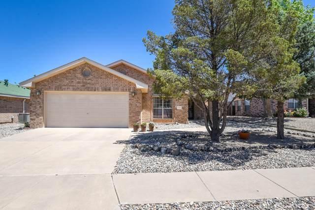 7416 Primrose Drive NW, Albuquerque, NM 87120 (MLS #991942) :: Sandi Pressley Team