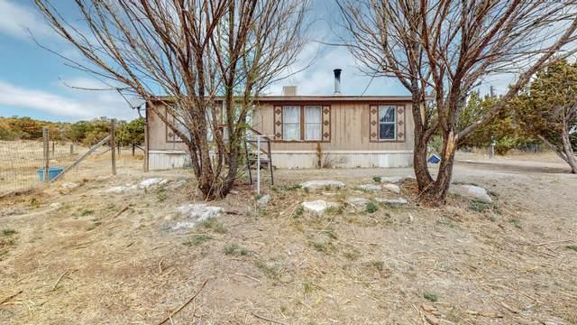 9 Tarn, Edgewood, NM 87015 (MLS #991945) :: Berkshire Hathaway HomeServices Santa Fe Real Estate