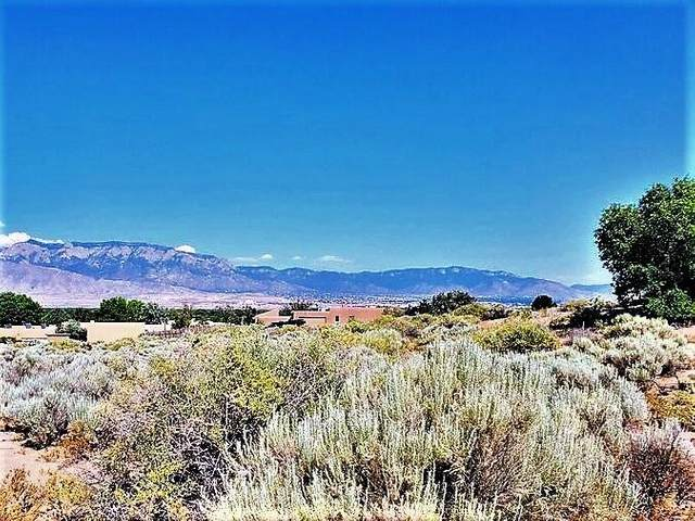 Lot 16A Morning Sun Trail, Corrales, NM 87048 (MLS #991990) :: Keller Williams Realty