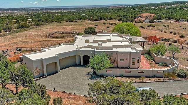 399 Sedillo Road, Tijeras, NM 87059 (MLS #992008) :: Campbell & Campbell Real Estate Services